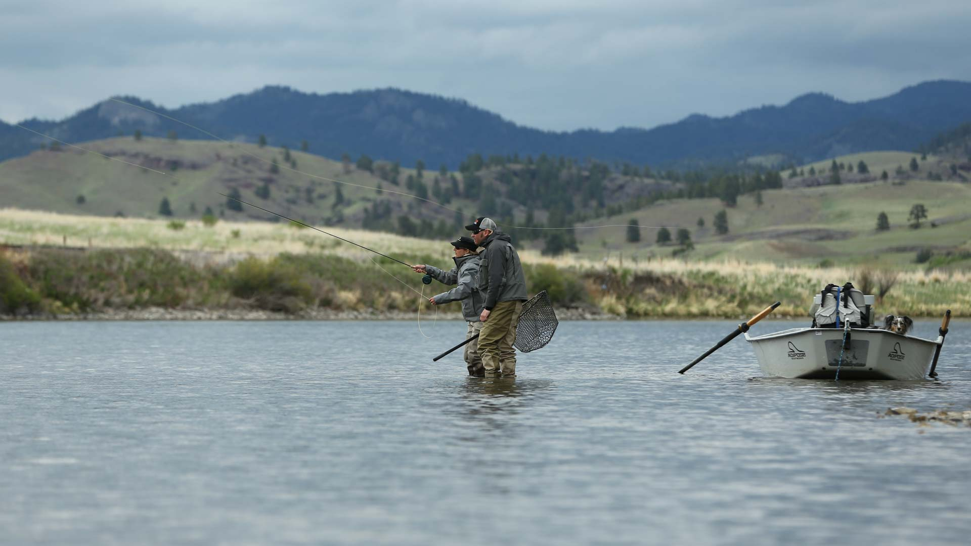 Montana fly fishing montana fly fishing guides llc for Montana fishing trips